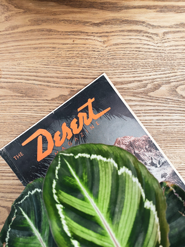 BWPDesign - Desert Desk