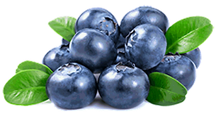 Blueberry-NoBorder-Trans.png