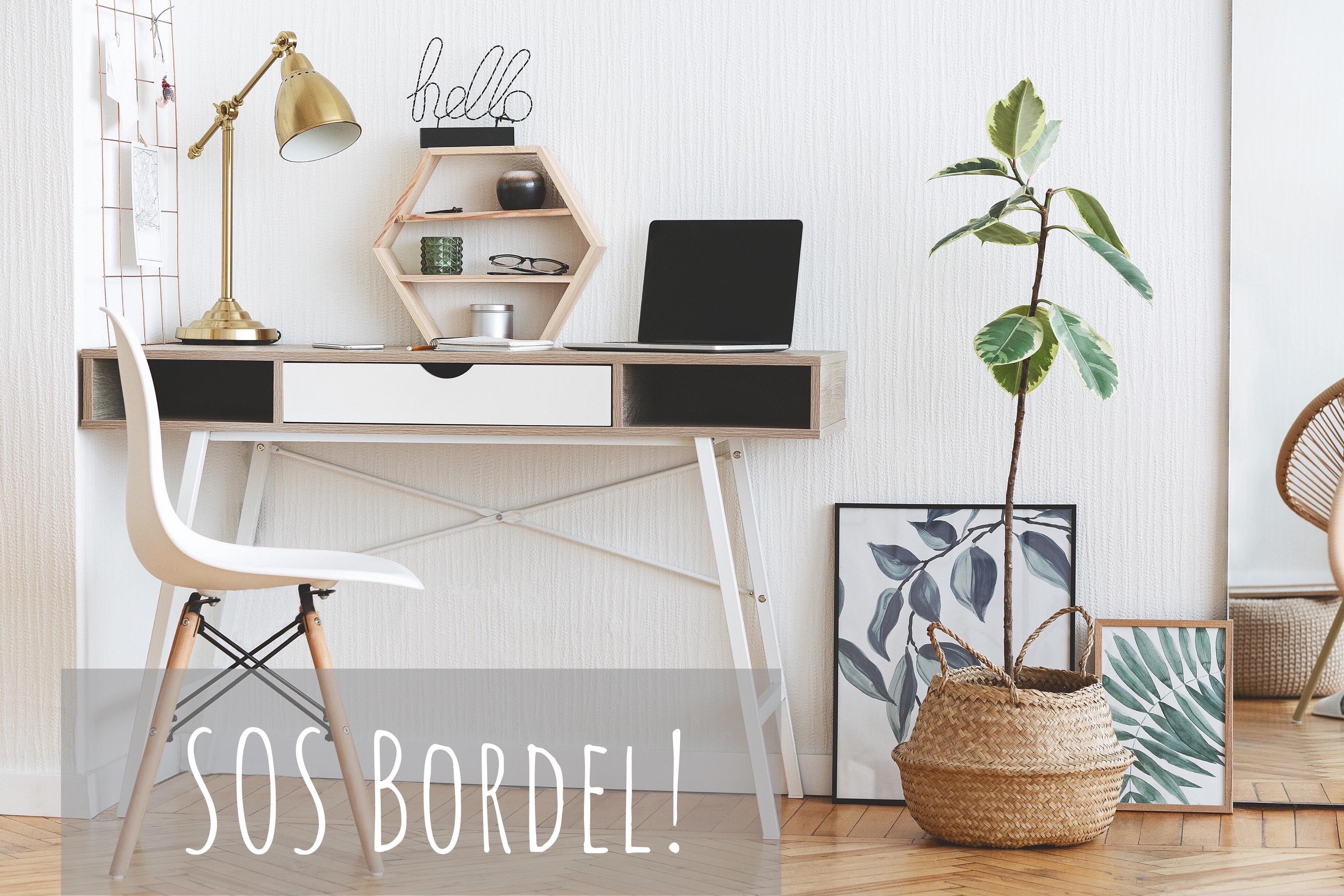 SOS Bordel! - consultation virtuelle