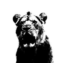 LION SILHOUETTE PRINT FROM NZD $40