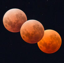 BLOOD MOON PRINT FROM NZD $40