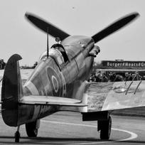 SPITFIRE PRINT FROM NZD $40