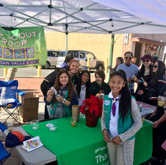 girl scouts booth