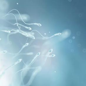 Zašto je važno da nalaz spermograma rade embriolozi?