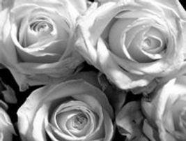 Weddings_Sandra_Bargman_roses.jpg
