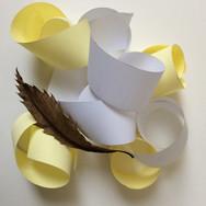 Paper Rolls and Leaf Still Life 2018