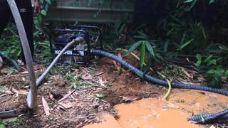 Koshin Schmutzwasserpumpe STV, Semi-Trash Pump STV