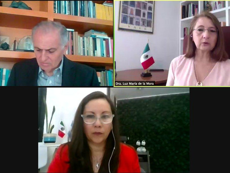 Conversación con la Dra. Luz María de la Mora