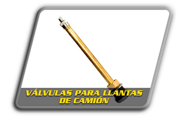 Valvula-Camion.png