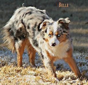 Belle 1a.jpg