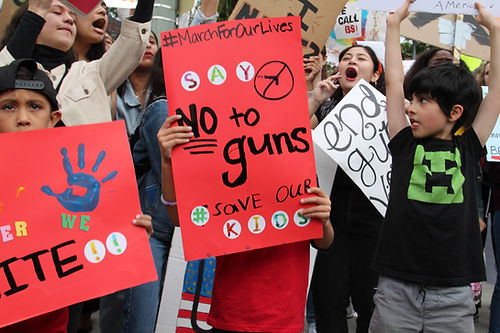 Young students are protesting against gun shootings across the naton.