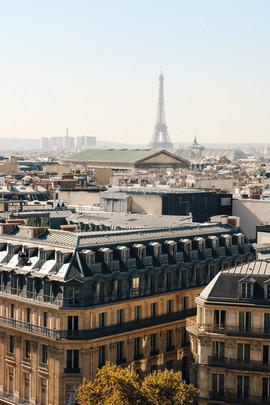 pariss-5.jpg