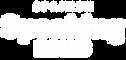 spanish-hacks-logo.png