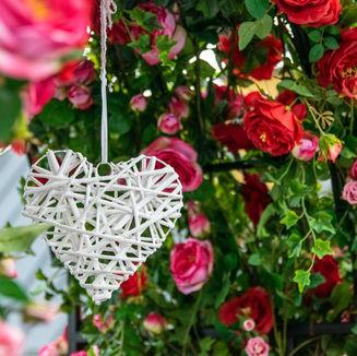 Herzlichst, ihr Rosengarten