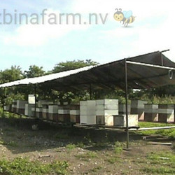 More of our #beehives.....