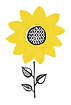 Clean sunflower.tif