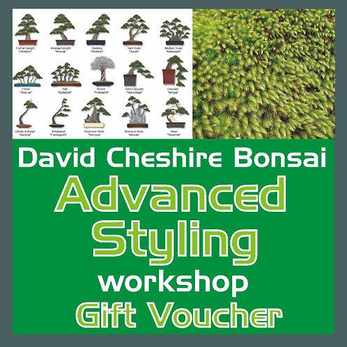 Advanced Styling Workshop Voucher
