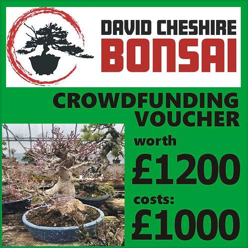 £1200 Crowdfunding Voucher