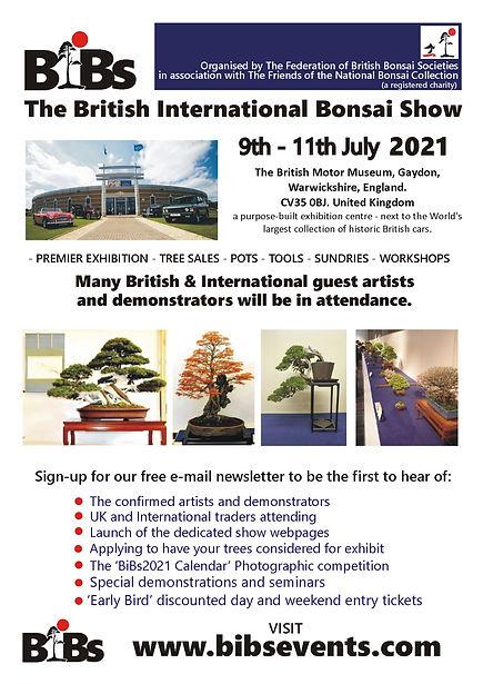 BiBs Show Poster.JPG