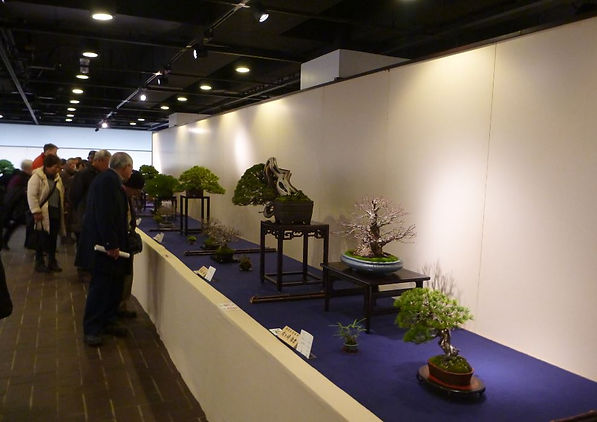Show Table 1.JPG