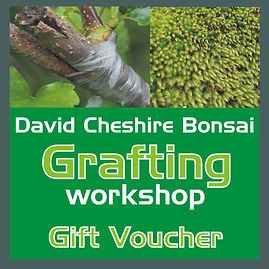 Grafting Workshop Tile.JPG