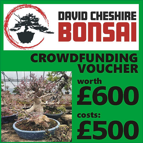 £600 Crowdfunding Voucher