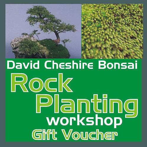 Rock Planting Workshop Voucher