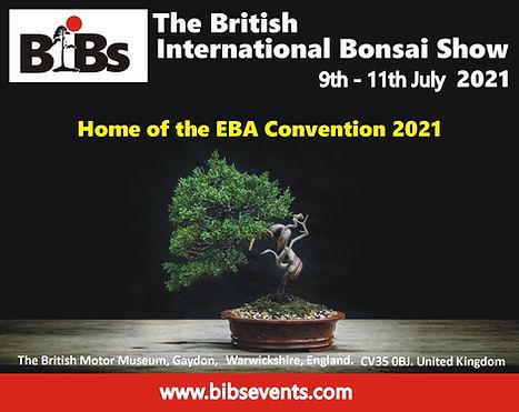 BiBs Banner EBA Conv.JPG