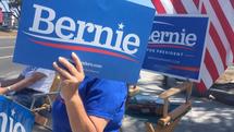 Bernie Gone Wild    2019
