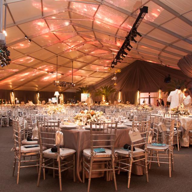 Elegant Fundraising Gala