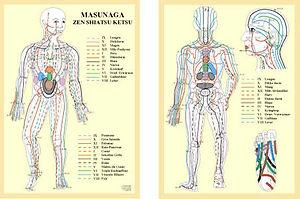 Shiatsu Marseille carte méridiens Masunaga