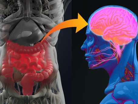Is Your Gut Affecting Your Brain?