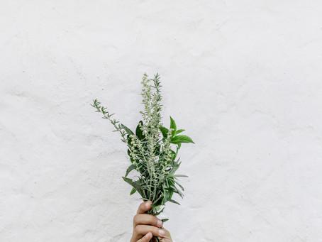 'Ερευνα: Το άρωμα του δεντρολίβανου μπορεί να βελτιώσει τη μνήμη