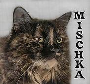 Mischka.jpg