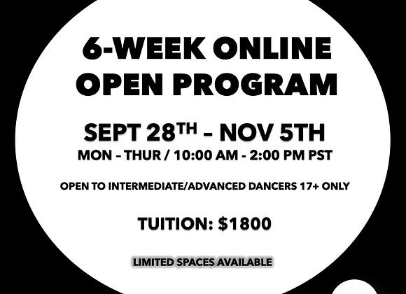 6-Week Online Program