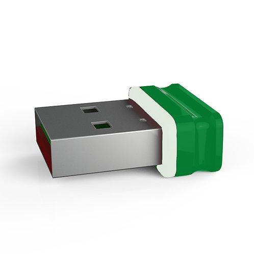 P1 USB Stick Grün Weiß