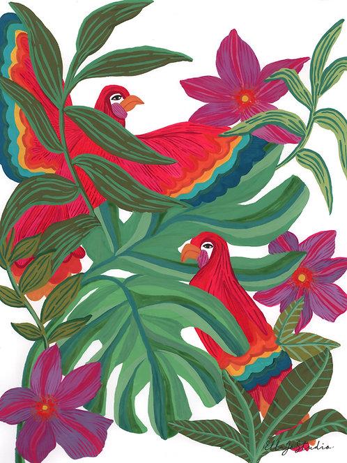 EllaJo Jungle Parrots Illüstrasyon