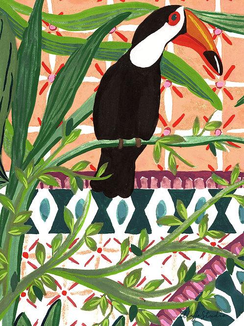 EllaJo Studio Toucan Illüstrasyon