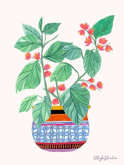 EllaJo Botanical Floral Illüstrasyon
