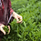 Thumbnail: Not Just A Cuppa Hediye Çay Seti: Doğu Hazları