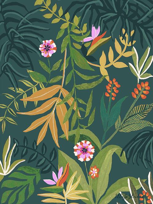 EllaJo Studio Tropical Jungle Illüstrasyon