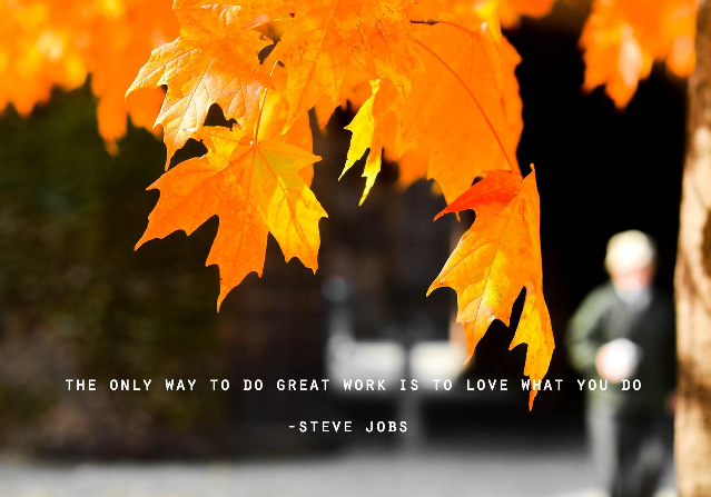 Love what you do - Steve Jobs.png