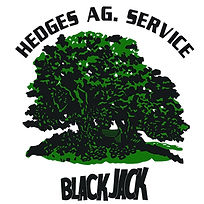The BLACK JACK logo.jpg