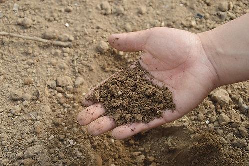 Topsoil (bulk/cu yd)