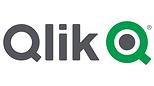 qlik-vector-logo.png