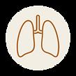 Catégorie du blog sphère pulmonaire