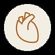 Catégorie du blog métabolisme et cardio