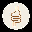 Catégorie du blog sphère digestive