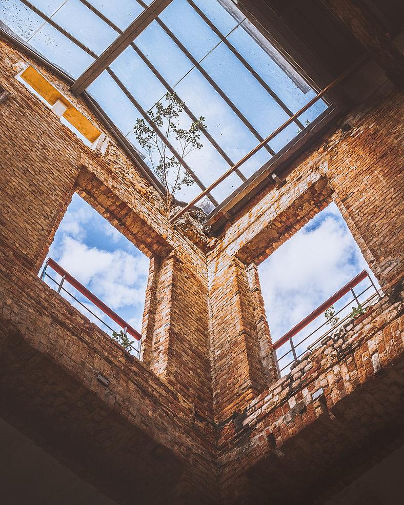 WINDOW _ Photo by Mauro Lima on Unsplash