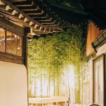 Bamboo Garden at Night